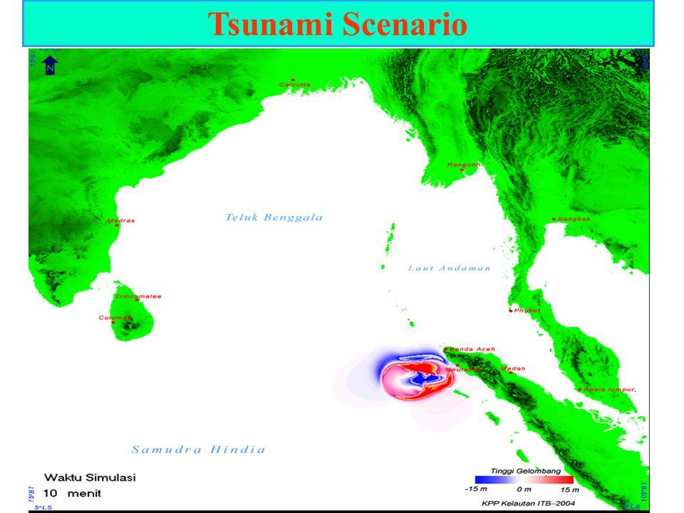 Tsunami Scenario