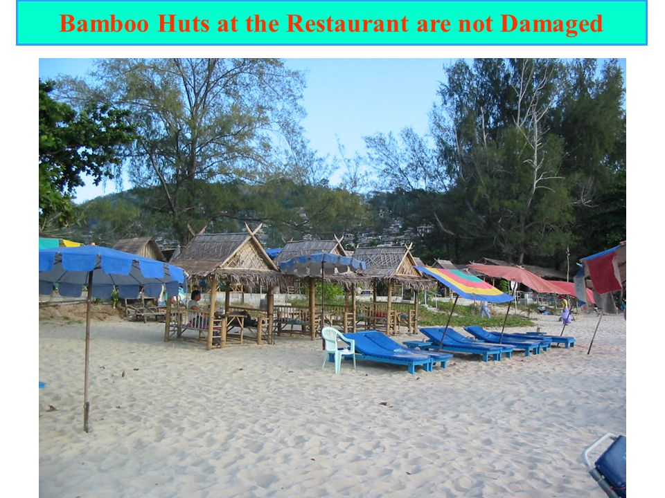 Bamboo Huts at the Restaurant are not Damaged