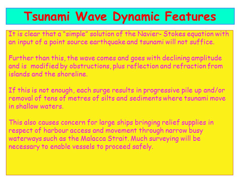 Tsunami Wave Dynamic Features