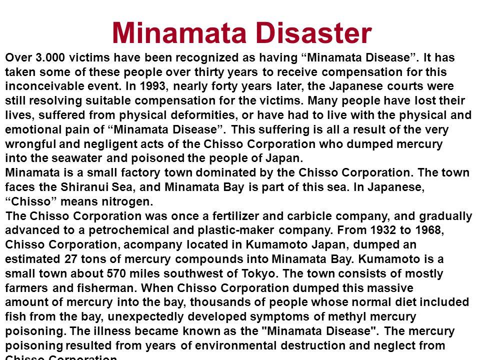 Minamata Disaster