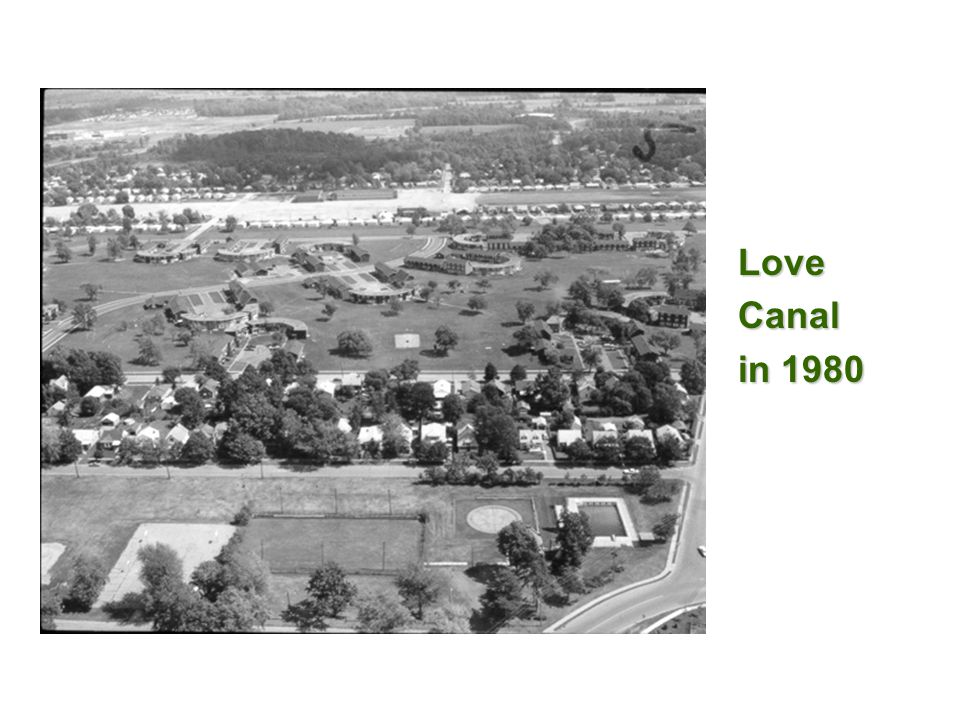 Love Canal in 1980 57