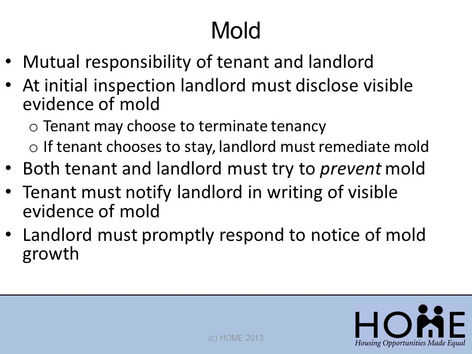 Mold Mutual responsibility of tenant and landlord