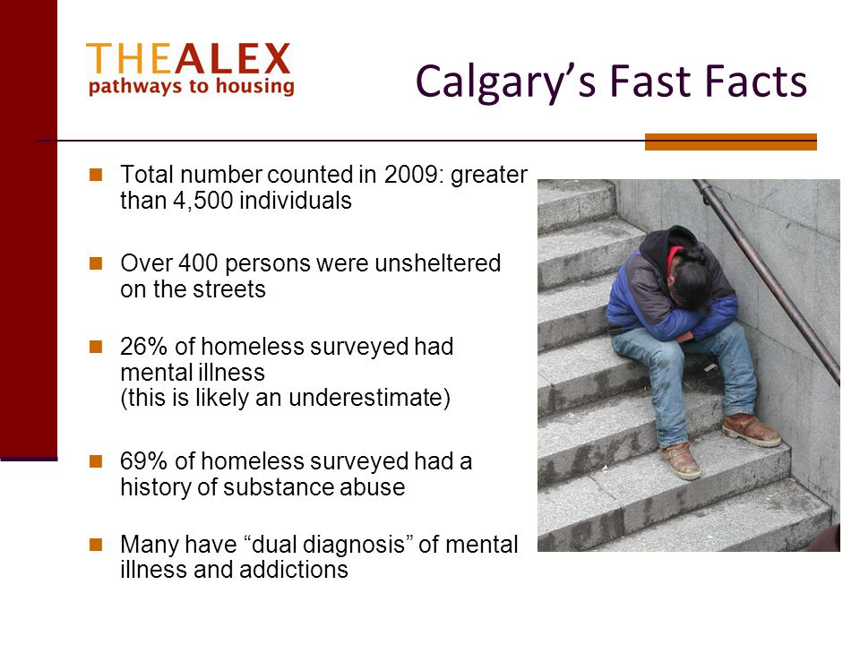 Calgary's Fast Facts Total number counted in 2009: greater than 4,500 individuals. Over 400 persons were unsheltered on the streets.