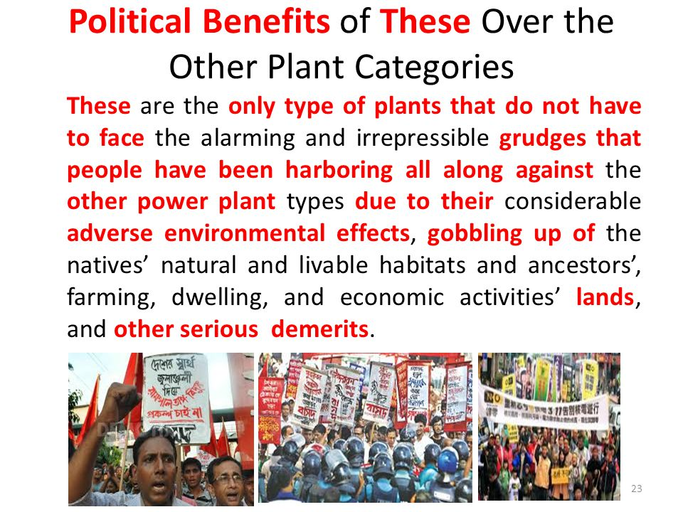 Political Benefits of These Over the Other Plant Categories