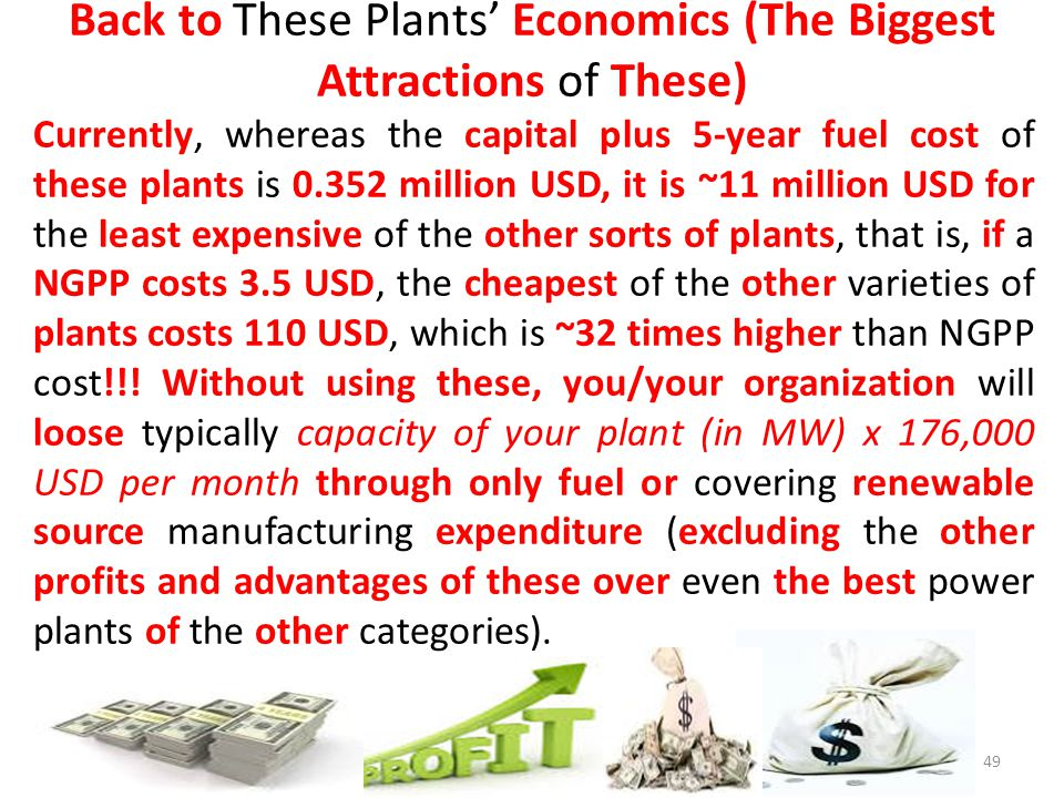 Back to These Plants' Economics (The Biggest Attractions of These)