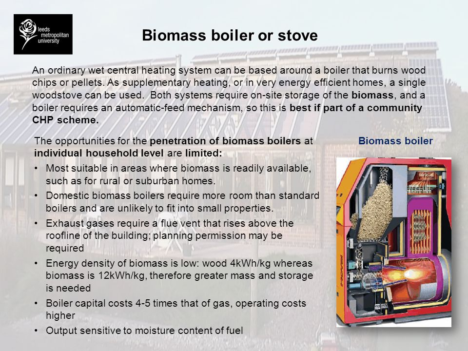 Biomass boiler or stove