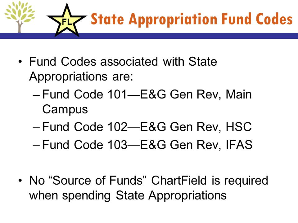 State Appropriation Fund Codes