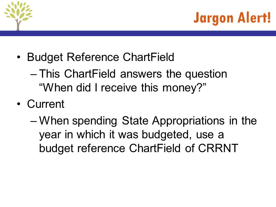 Jargon Alert! Budget Reference ChartField