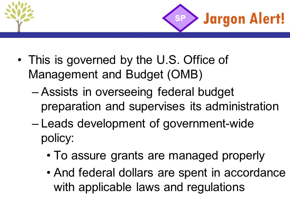 Jargon Alert! SP. This is governed by the U.S. Office of Management and Budget (OMB)