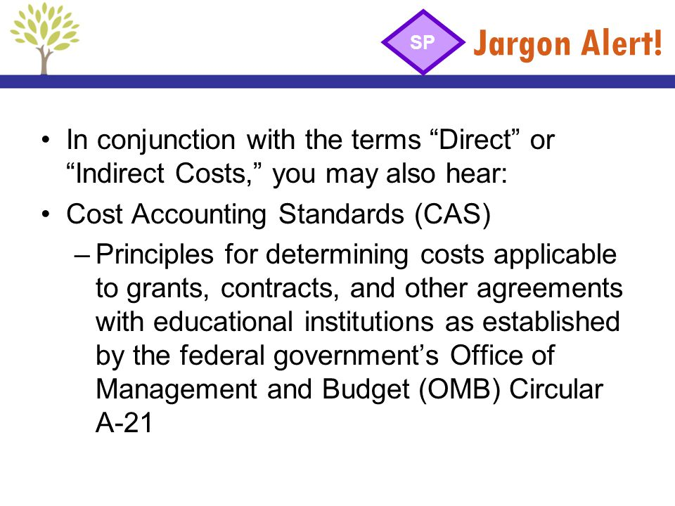 Jargon Alert! SP. In conjunction with the terms Direct or Indirect Costs, you may also hear: Cost Accounting Standards (CAS)