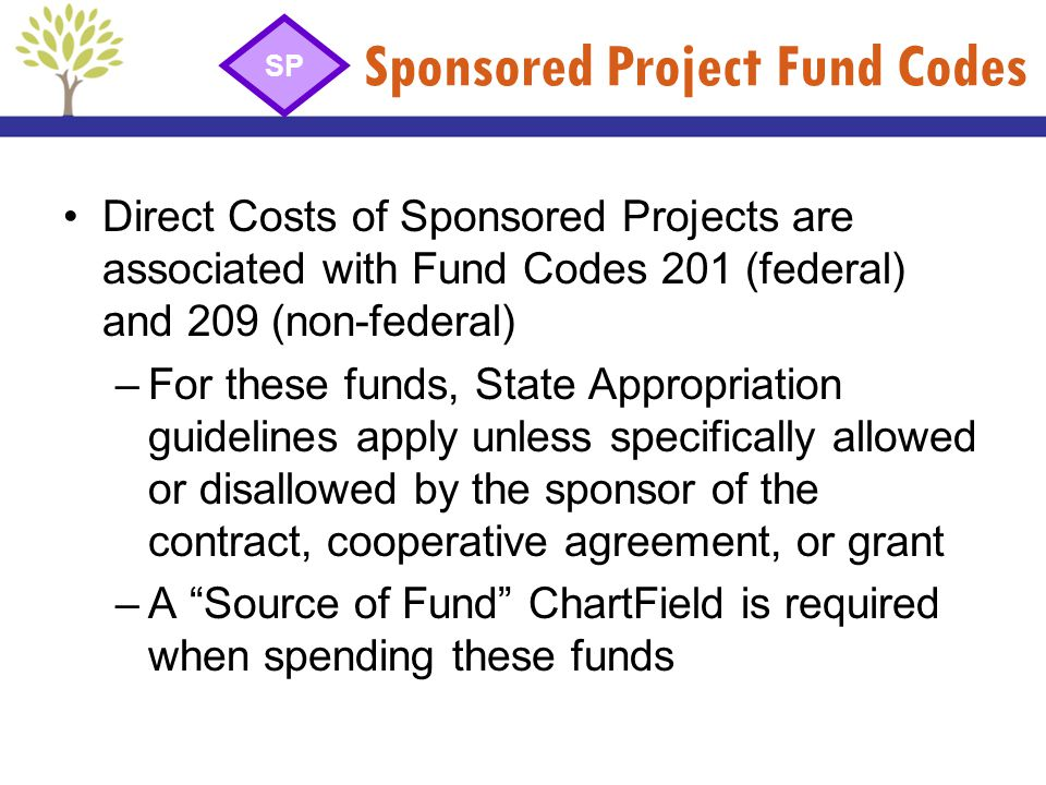 Sponsored Project Fund Codes