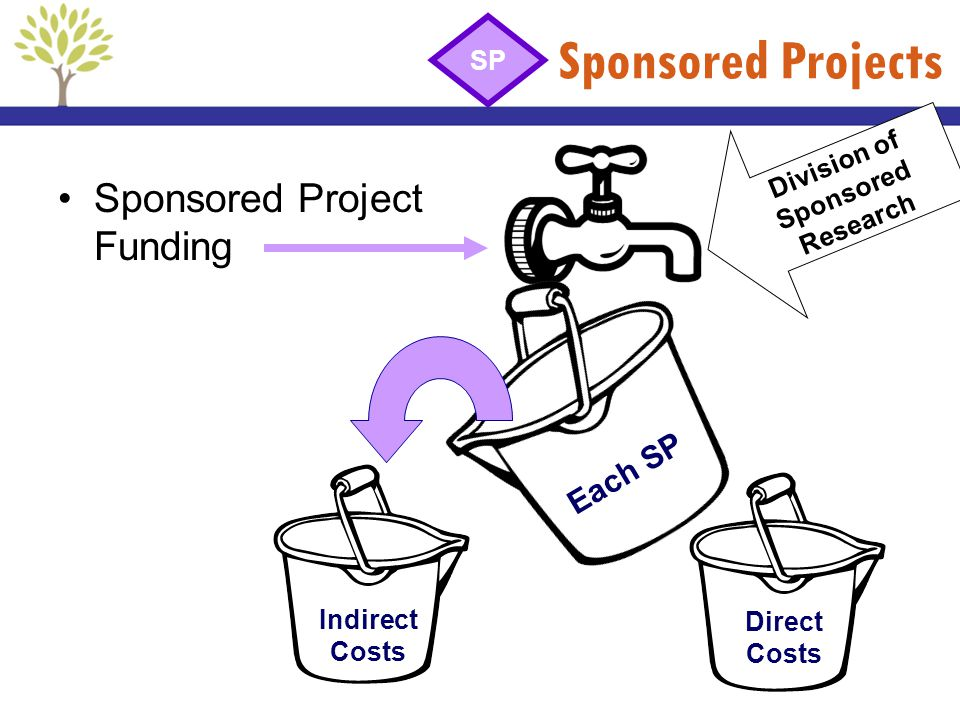 Division of Sponsored Research