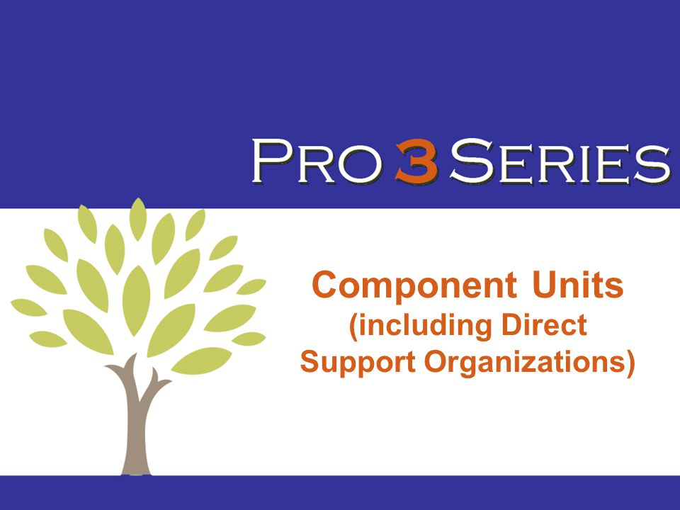 Component Units (including Direct Support Organizations)