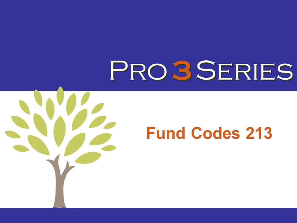 Fund Codes 213