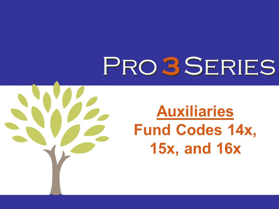 Auxiliaries Fund Codes 14x, 15x, and 16x
