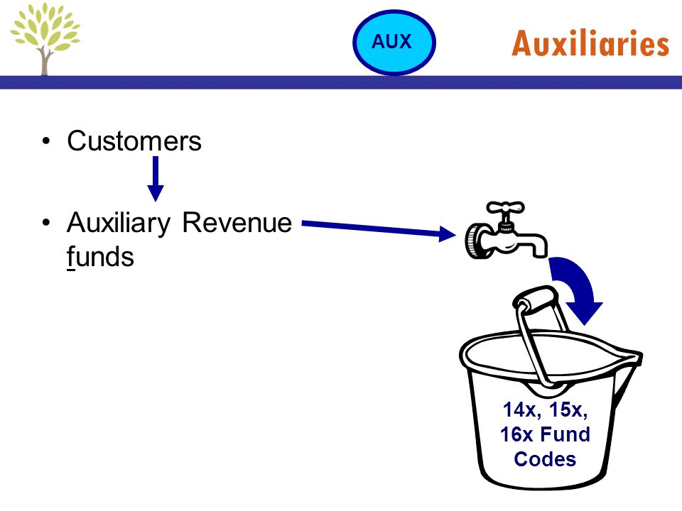 Auxiliaries Customers Auxiliary Revenue funds 14x, 15x, 16x Fund Codes