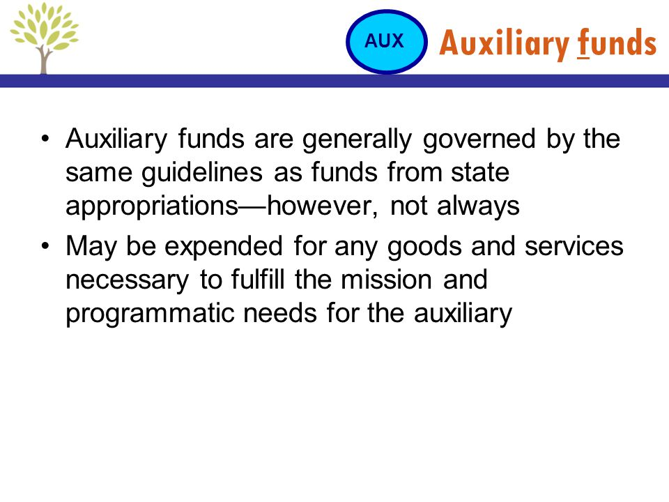 Auxiliary funds AUX. Auxiliary funds are generally governed by the same guidelines as funds from state appropriations—however, not always.