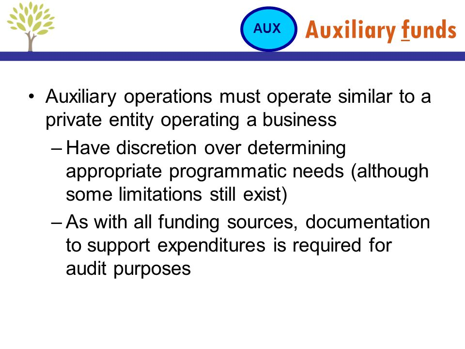 Auxiliary funds AUX. Auxiliary operations must operate similar to a private entity operating a business.