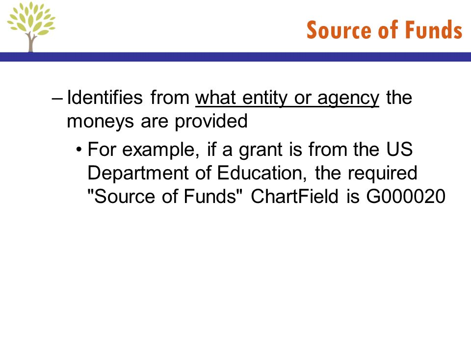 Source of Funds Identifies from what entity or agency the moneys are provided.