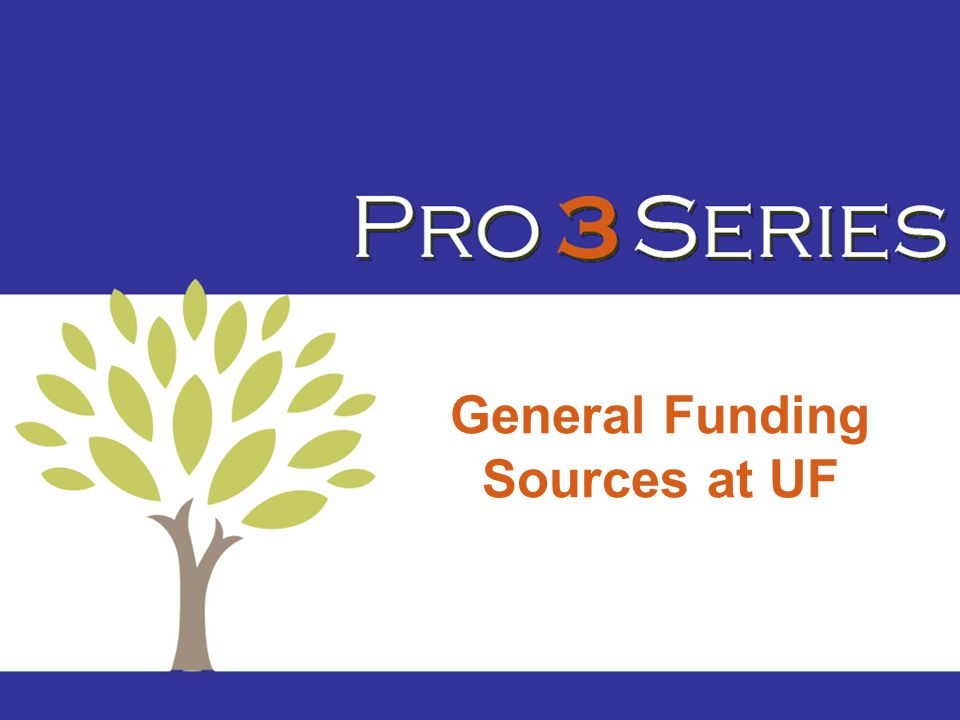 General Funding Sources at UF