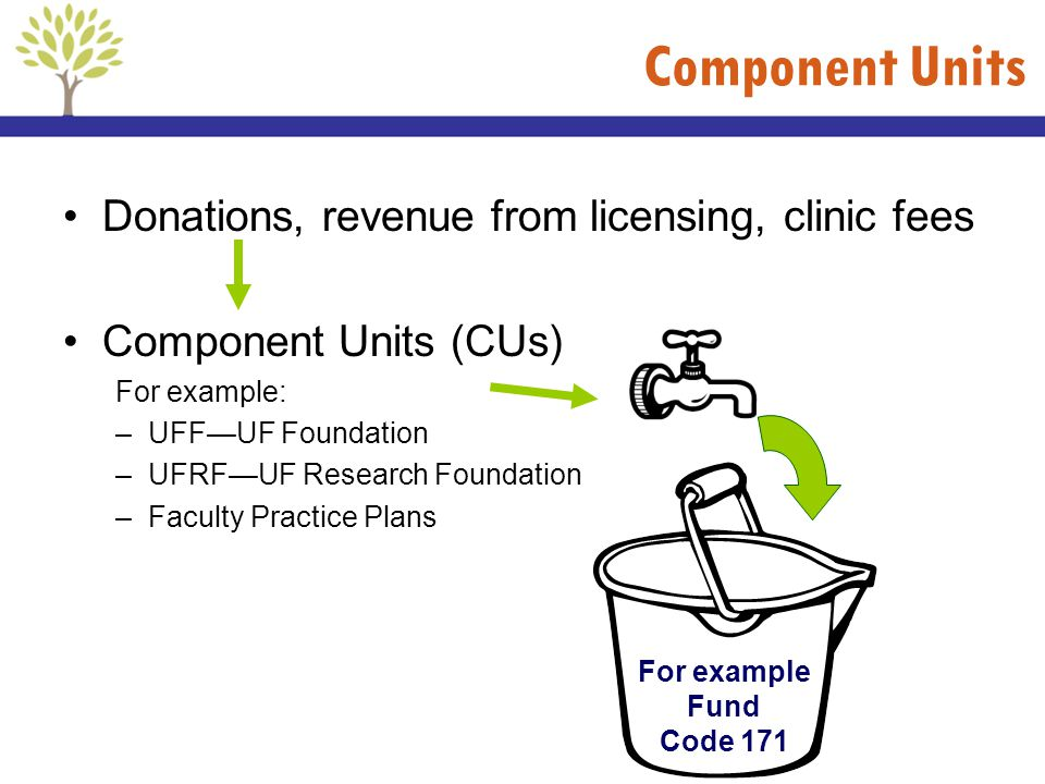 Component Units Donations, revenue from licensing, clinic fees