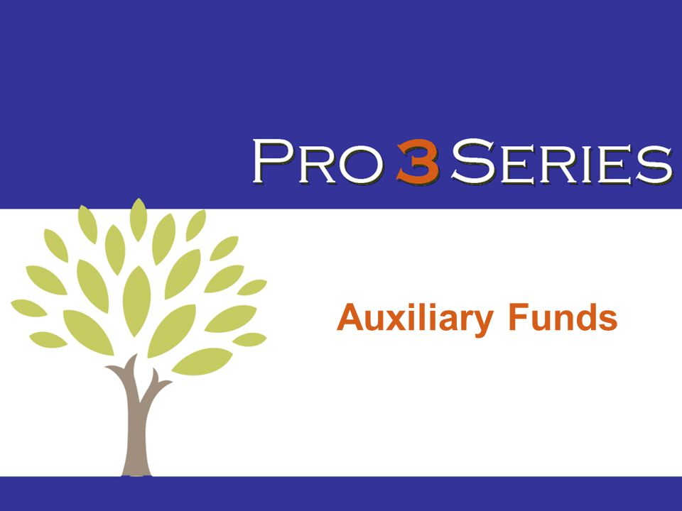 Auxiliary Funds