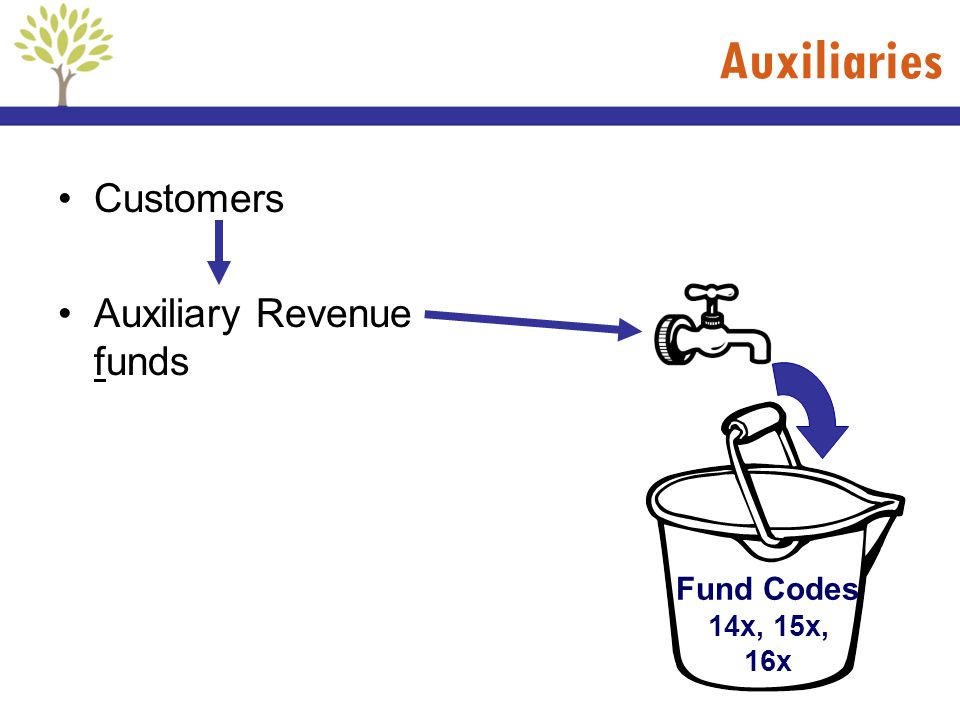 Auxiliaries Customers Auxiliary Revenue funds Fund Codes 14x, 15x, 16x