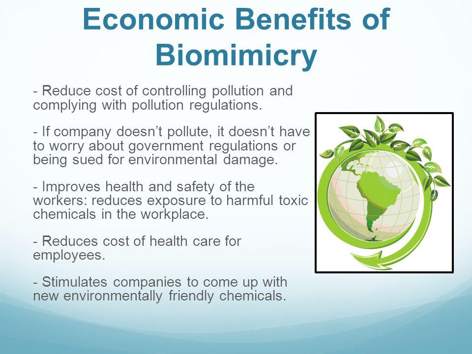 Economic Benefits of Biomimicry