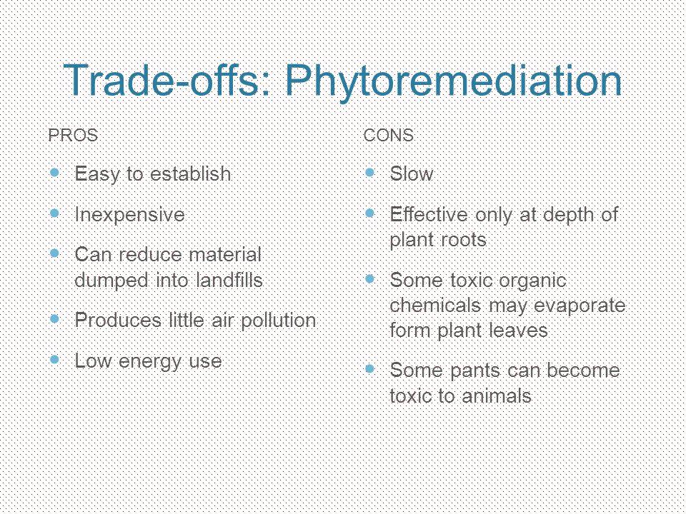 Trade-offs: Phytoremediation