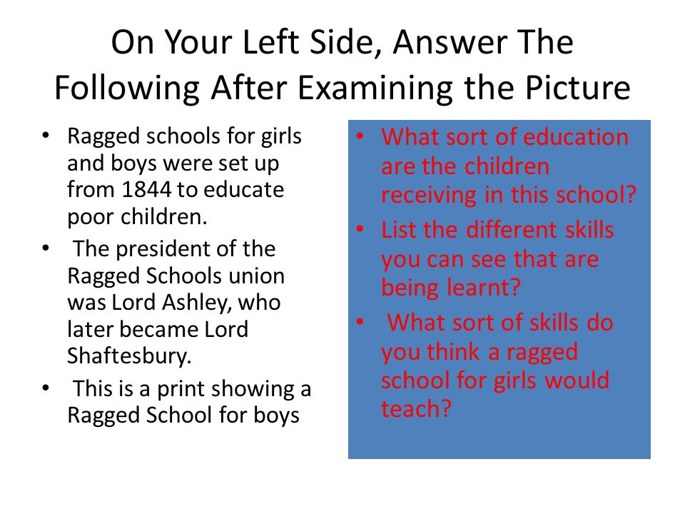 On Your Left Side, Answer The Following After Examining the Picture