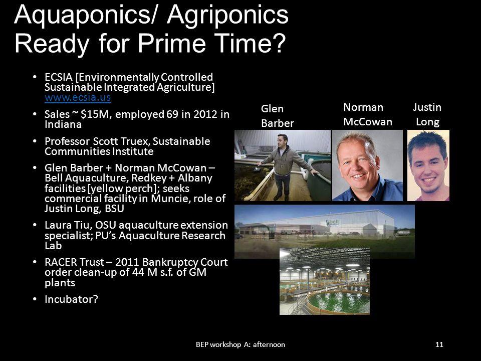 Aquaponics/ Agriponics Ready for Prime Time