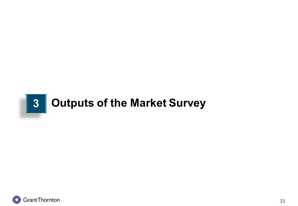 Outputs of the Market Survey