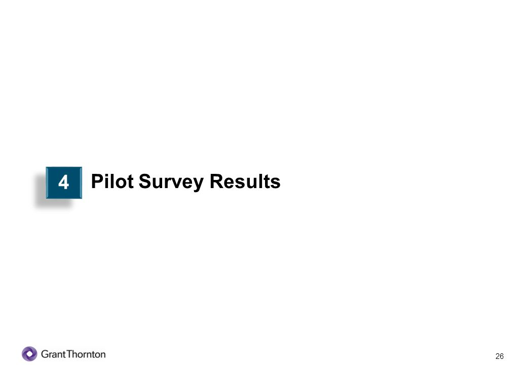 4 Pilot Survey Results 26