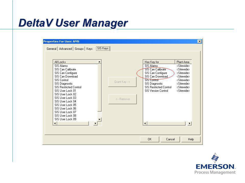 DeltaV User Manager