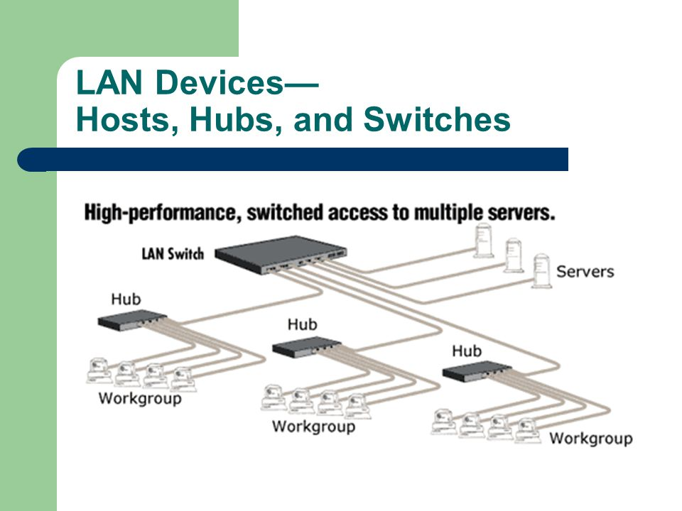 LAN Devices— Hosts, Hubs, and Switches