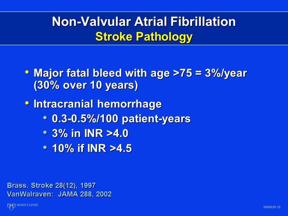 Non-Valvular Atrial Fibrillation Stroke Pathology