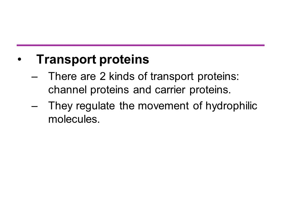 Transport proteins There are 2 kinds of transport proteins: channel proteins and carrier proteins.