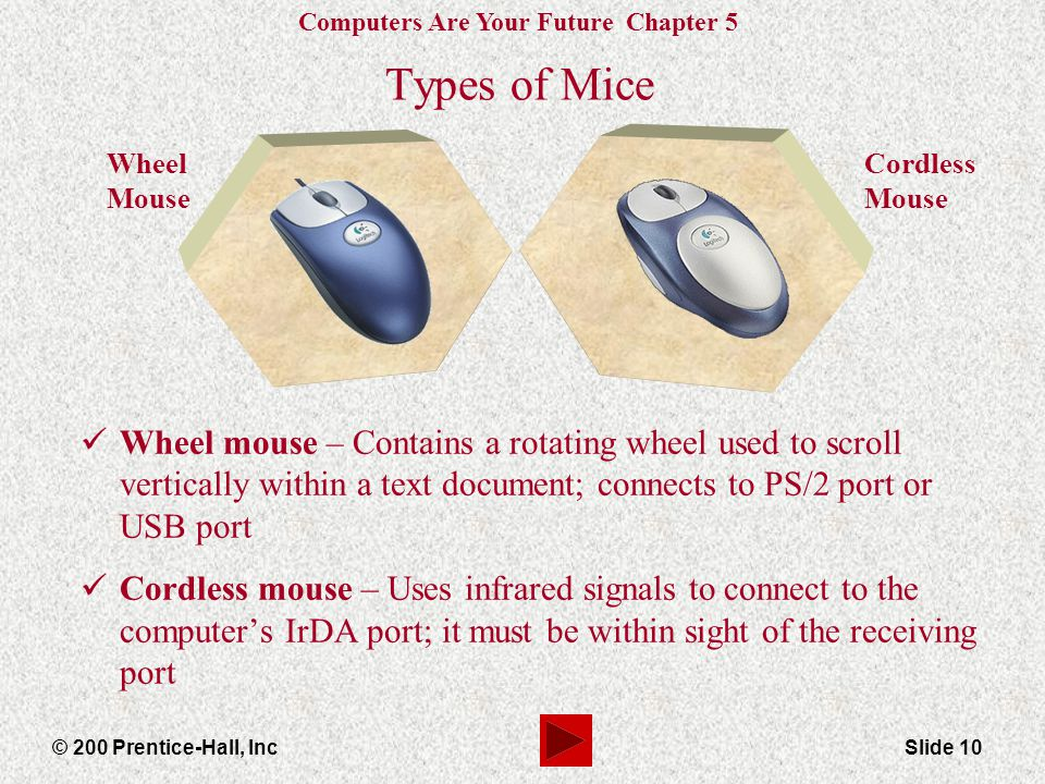 Types of Mice Wheel Mouse. Cordless Mouse.