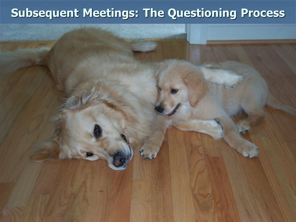 Subsequent Meetings: The Questioning Process