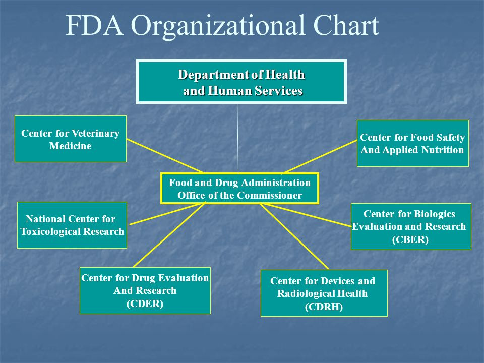 Summary - Accessdata FDA - Food and Drug Administration ...