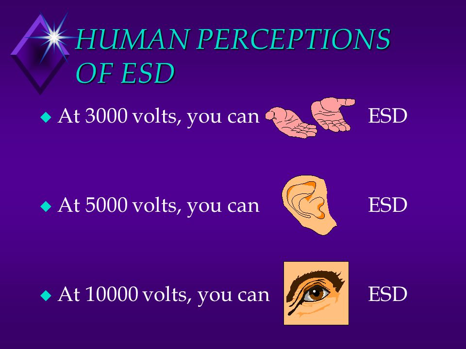 HUMAN PERCEPTIONS OF ESD