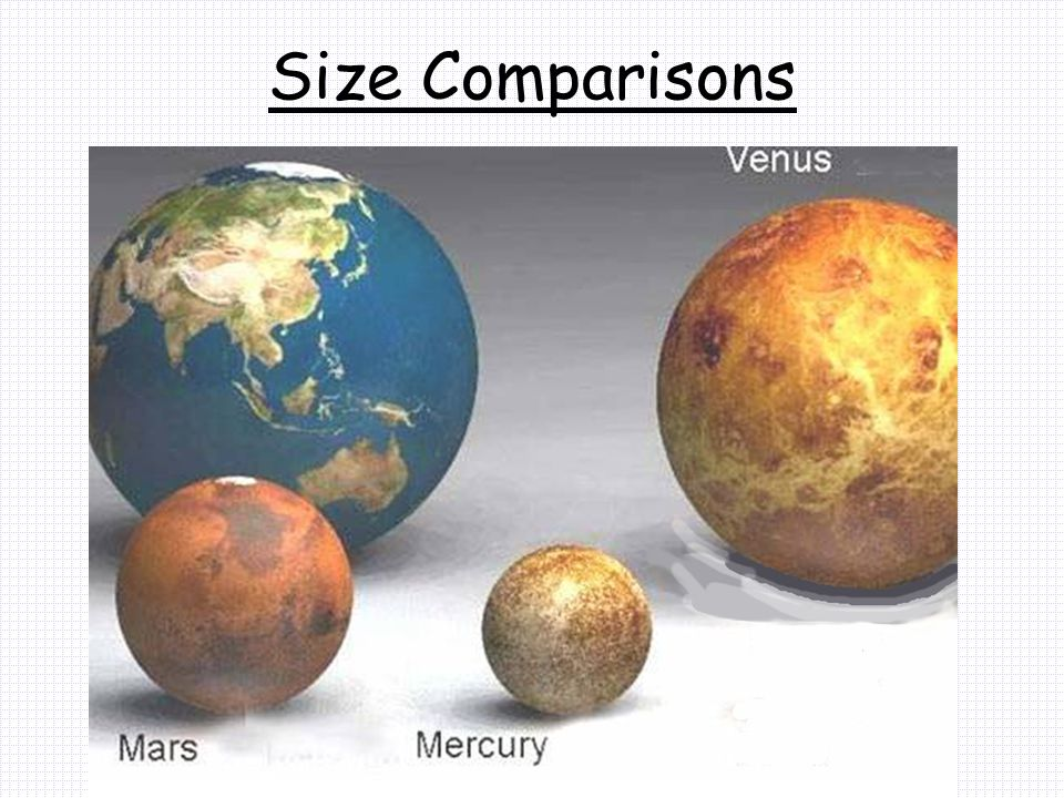 Size Comparisons