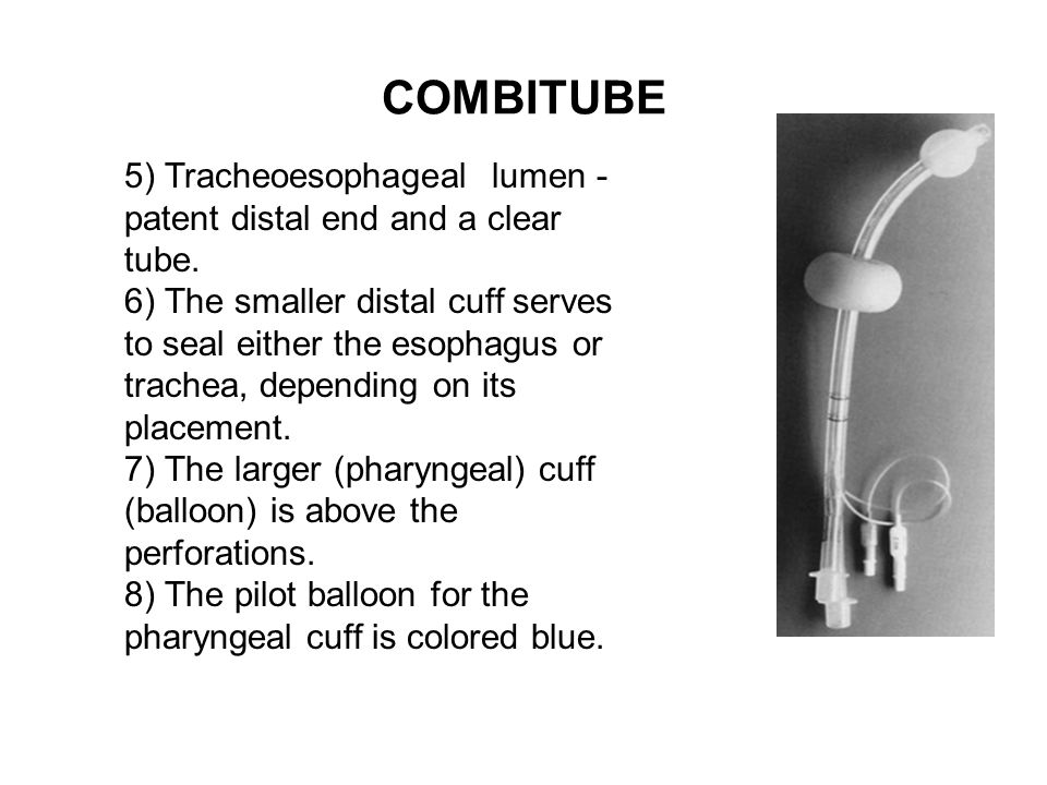 COMBITUBE 5) Tracheoesophageal lumen - patent distal end and a clear tube.