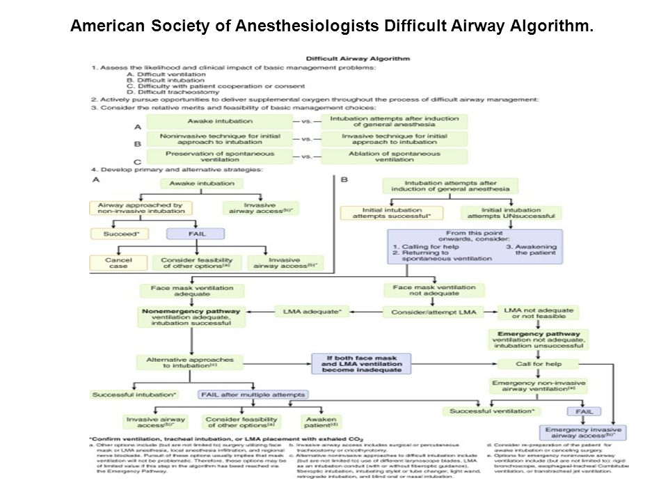 American Society of Anesthesiologists Difficult Airway Algorithm.