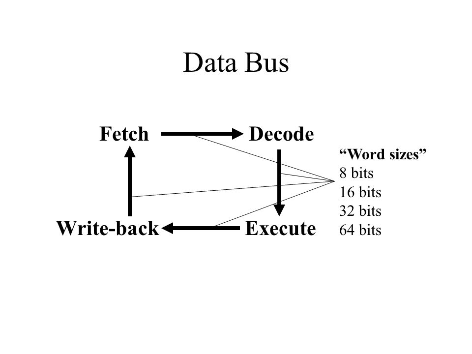 Data Bus Fetch Decode Execute Write-back Word sizes 8 bits 16 bits