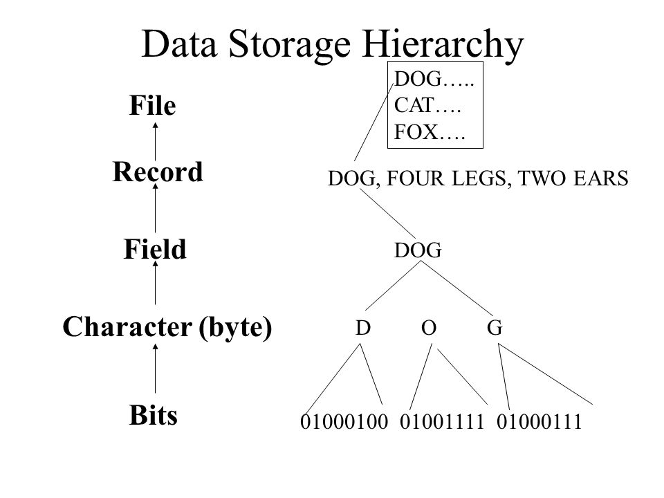Data Storage Hierarchy