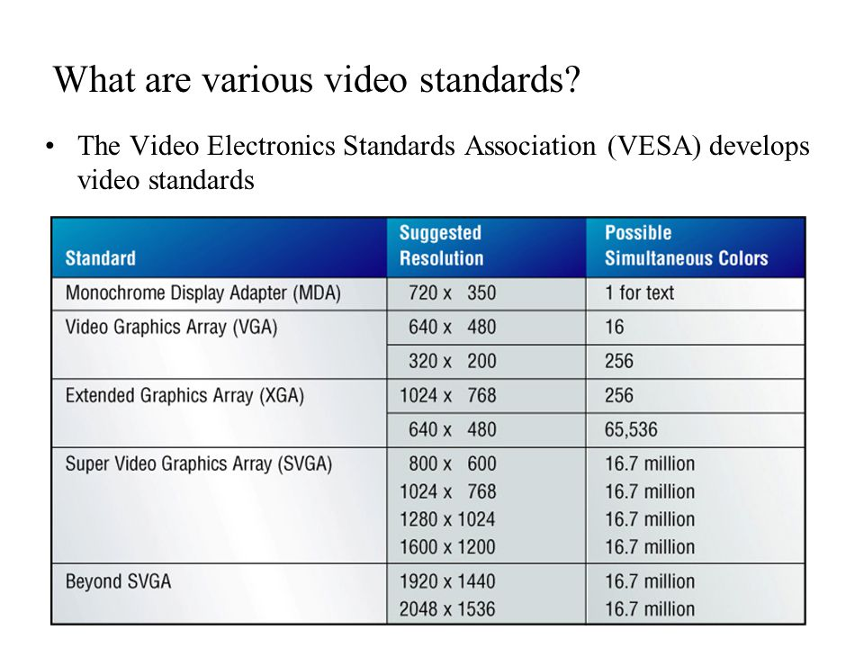 What are various video standards