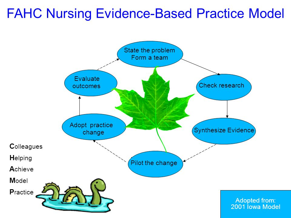 FAHC Nursing Evidence-Based Practice Model
