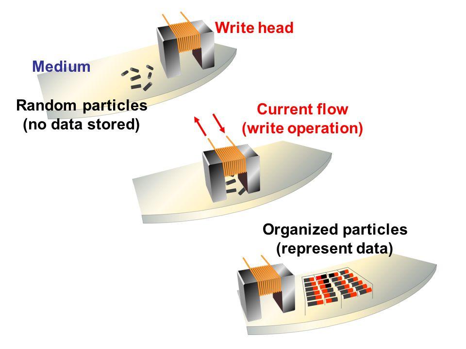 Write head Medium. Random particles. (no data stored) Current flow. (write operation) Organized particles.