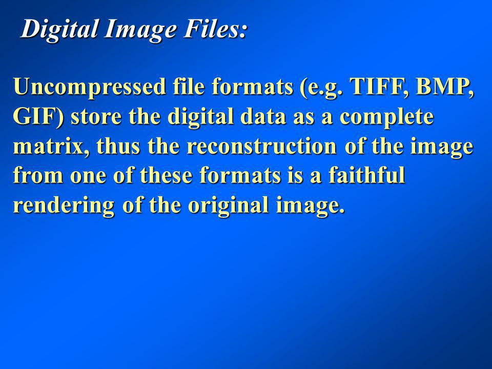 Digital Image Files: